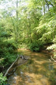 Creek at the Res